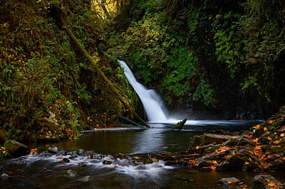 Photograph - Goldstream Falls by Keith Boone