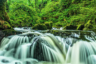 Photograph - Golitha Falls, Cornwall by David Ross