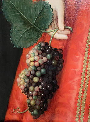 Water Droplets Sharon Johnstone - Good luck grapes by Marilyn Hunt