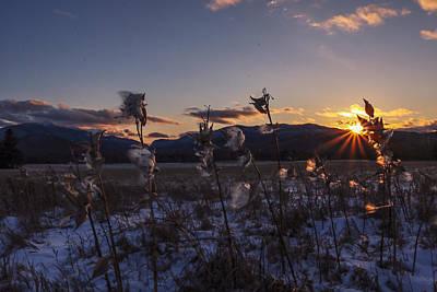 Photograph - Goodnight by Jessica Tabora