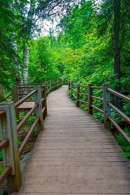 Photograph - Gooseberry River Trail by Susan Rydberg