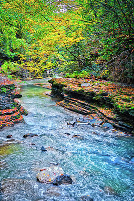 Photograph - Gorge View In Fall At Watkin's Glen State Park by Lynn Bauer