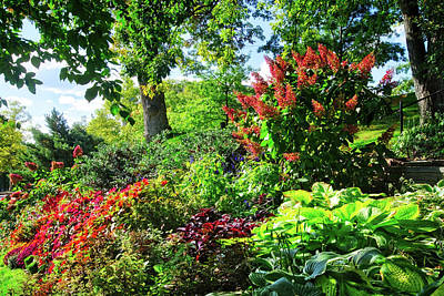 Art Print featuring the photograph Gorgeous Gardens At Cornell University - Ithaca, New York by Lynn Bauer