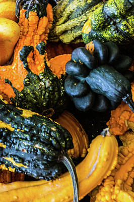 Photograph - Gourds by Stewart Helberg