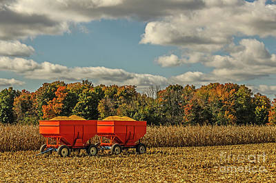Photograph - Grain Wagons Loaded With Maize by Sue Smith