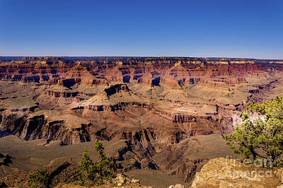 Photograph - Grand Canyon South Rim #1 by Blake Webster