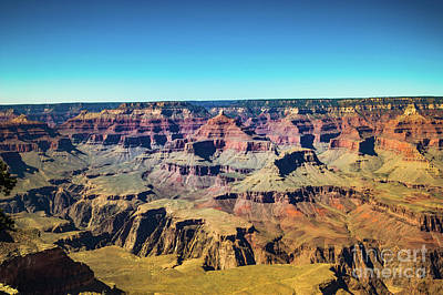Photograph - Grand Canyon South Rim #5 by Blake Webster