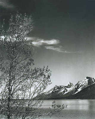 Photograph - Grand Teton by Archive Photos