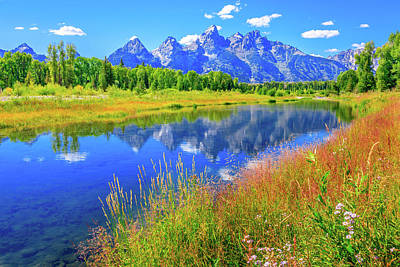 Water Photograph - Grand Tetons Mountains, Wildflowers by Dszc