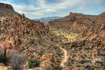 Photograph - Grapevine Mountain Trail by Joe Sparks