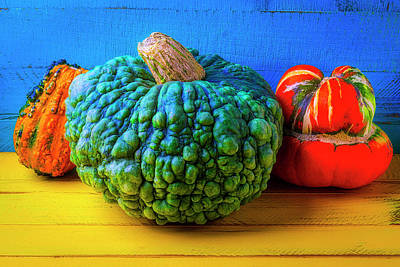 Photograph - Graphic Autumn Pumpkins And Gourds by Garry Gay