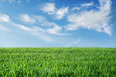 Photograph - Grass And Sky by Joe Drivas