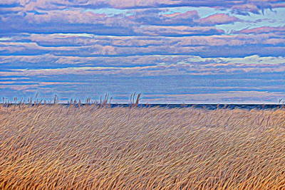 Photograph - Grass And Sky by Karen Silvestri