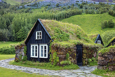 Reptiles - Grass Roof Cottages at the Skogar Folk Museum of Iceland by Pierre Leclerc Photography