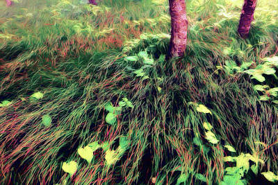Painting - Grasses And Vines A Touch Of Autumn Ap by Dan Carmichael