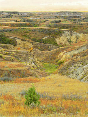 Photograph - Grasslands Badlands September Reverie by Cris Fulton