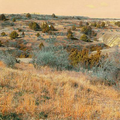 Photograph - Grassy Ridge Reverie by Cris Fulton