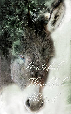 Photograph - Grateful, Thankful, Blessed by Jennifer Grossnickle
