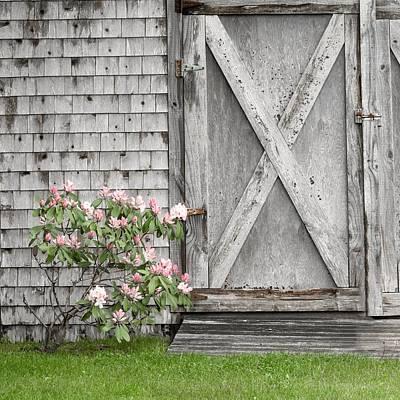 Photograph - Gray and Pink by Caroline Jensen