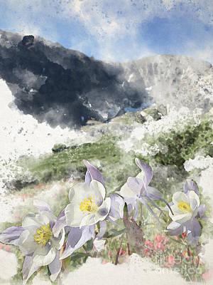 Digital Art - Gray's Columbine by Blake Lasley