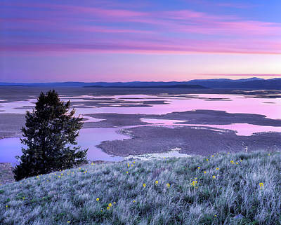 Photograph - Grays Lake Sunrise by Leland D Howard
