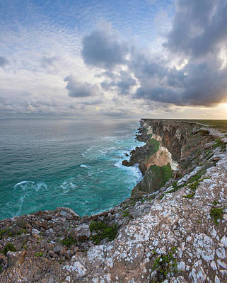 Photograph - Great Australian Bight Marine N.p by Eastcott Momatiuk