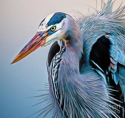 Photograph - Great Blue Heron by Brian Tarr