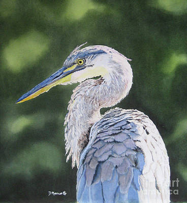 Painting - Great Blue Heron by Diane Marcotte