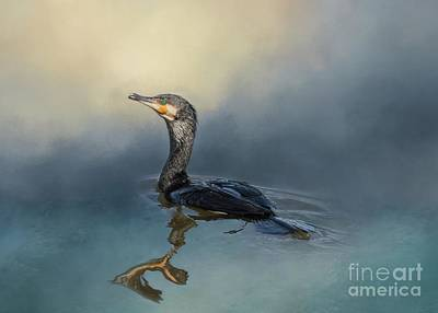 Mixed Media - Great Cormorant Swimming by Eva Lechner