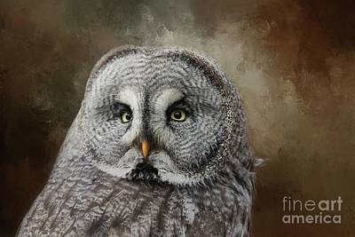 Photograph - Great Grey Owl Portrait by Eva Lechner