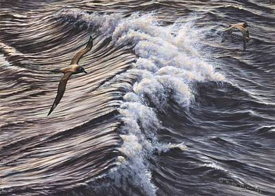Painting - Great Skua Seabirds By Alan M Hunt by Alan M Hunt