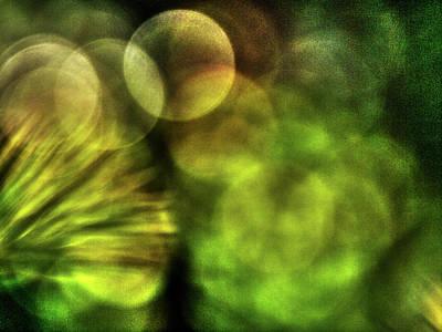 Photograph - Green Art 1 by Jorg Becker