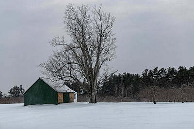 Photograph - Green Barn by Bob Doucette