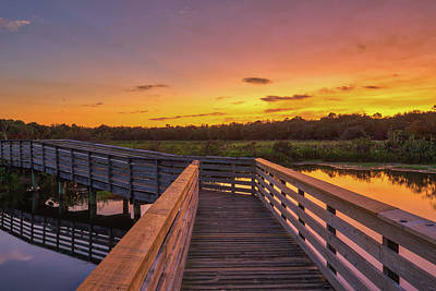 Photograph - Green Cay Wetlands by Juergen Roth