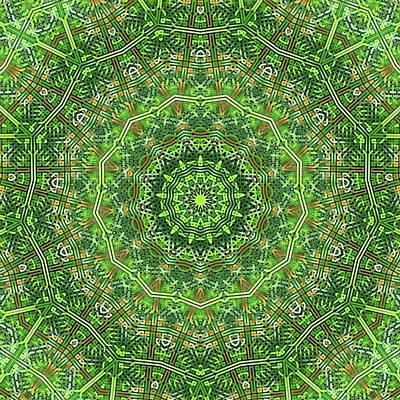 Digital Art - Green Celtic Knot Circle Kaleidoscope by Cindy Boyd