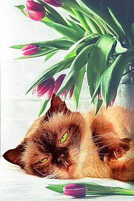 Digital Art - Green Eyed Lady by Debra and Dave Vanderlaan
