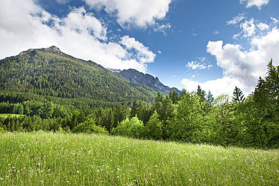 Photograph - Green Field In The Mountains by Djgunner