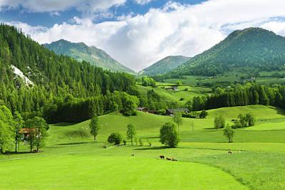 Photograph - Green Fields And Mounatins by Djgunner