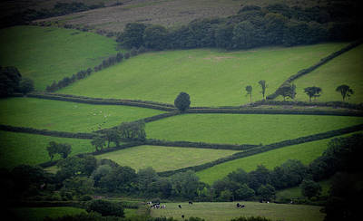 Photograph - Green Fields by Helen Northcott