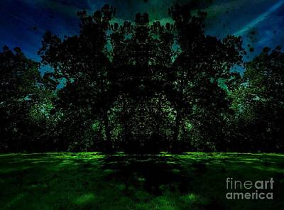 Photograph - Green Pastures by Amanda Kessel