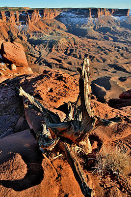 Photograph - Green River Overlook In Canyonlands National Park by Ray Mathis