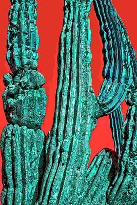 Digital Art - Green Sagauro Cactus by Annie Omens
