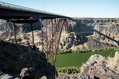 Photograph - Green Snake And Perrine Bridge by Tom Cochran