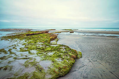 Photograph - Green Tabletops by Joseph S Giacalone