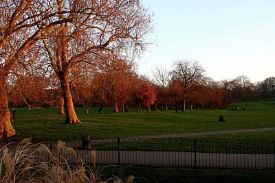 Photograph - Greenwich Park At Sunset, London, England by Aidan Moran