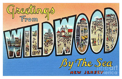 Photograph - Wildwood Greetings - Version 4 by Mark Miller