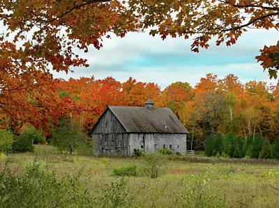 Photograph - Grey Barn Fall Colors by David T Wilkinson