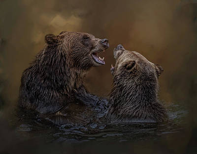 Photograph - Grizzlies At Play by Kelley Parker