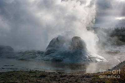 Photograph - Grotto Geyser - Yellowstone National Park by Sandra Bronstein