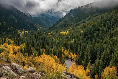 Photograph - Guanella Pass by Darlene Bushue